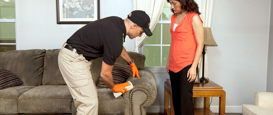 Far North Dallas, TX carpet upholstery cleaning